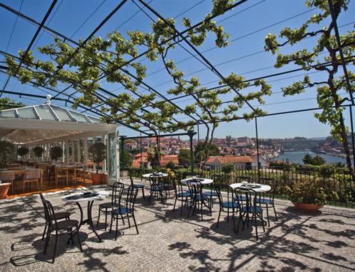 A la découverte du Douro avec les Symington Family Estates