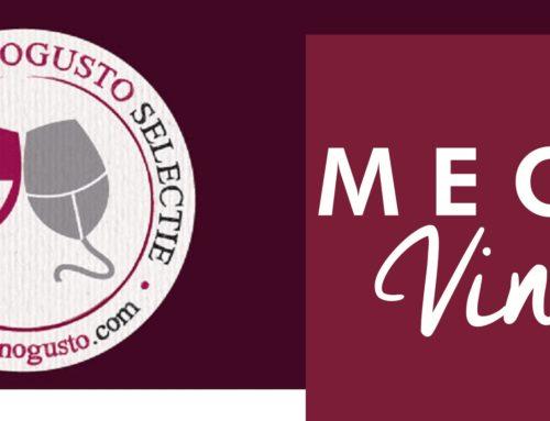 Mégavino 2019 | Sélection Vinogusto parmi les vins des producteurs