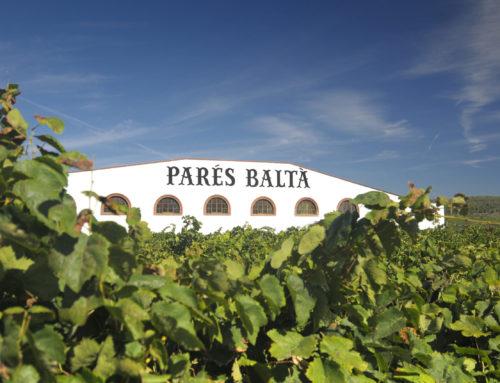 Dégustation confinée des vins de Parès Balta