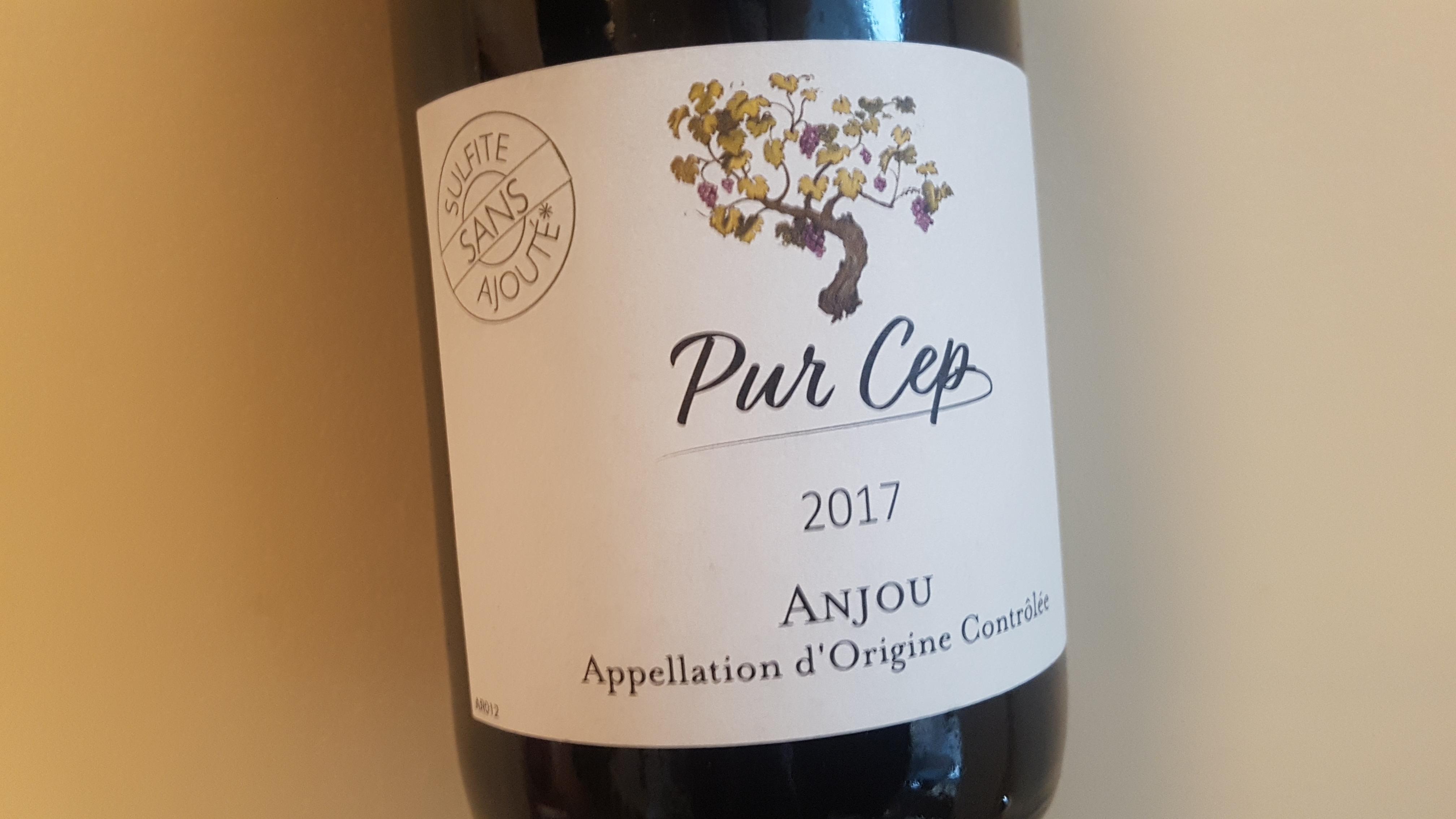 Les Caves de la Loire Anjou Pur Cep 2017 – Loire